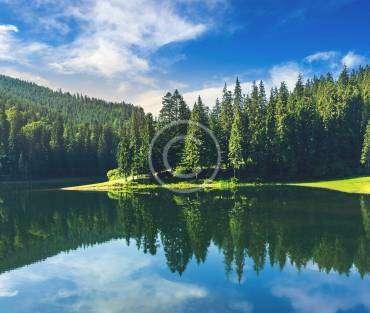 Top 10 Summer Camps List